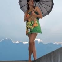 hinterland_model